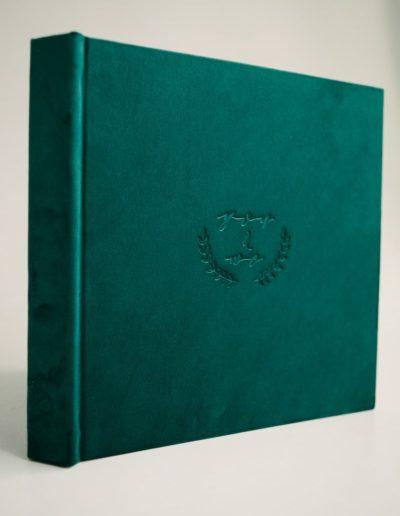 Пример книги Изумрудный велюр