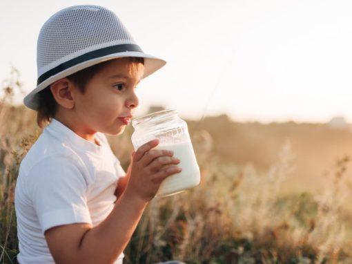 Детская фотосессия в поле на закате c молоком и батоном